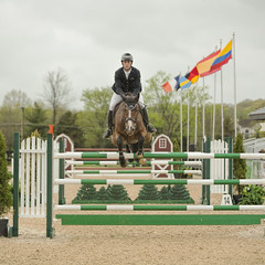 Jumper 3 (William_Doyle) Tags: horses horse cold rain clouds photoshop spring farm north may nj princeton hunter equestrian 2016 skillman topazclarity topazdenoize