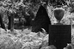 Cimetire Assistens, Copenhague (Quentin Verwaerde) Tags: light blackandwhite tree beauty cemetery copenhagen dead denmark construction pretty peace cross noiretblanc lumire mort tr peaceful tranquility funeral tip beaut fred end vase pointe ferns fin ro danmark arbre let andersen biancoenero kbenhavn croix kierkegaard paix fougres joli cimetire begravelse danemark funraire copenhague konstruktion copenaghen kors danimarca kirkegrd bregner assistens paisible smuk funeraryart quitude tranquillit sortoghvid sknhed artfunraire verwaerde quentinverwaerde fredelige begravelseskunst blindgyde