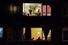 Like an Hopper painting (Il_naso) Tags: life family light window netherlands yellow night dinner rotterdam arte arts nederland like voyeur luci piante hopper olanda vite paints degli altri finestre paesi dipinto bassi