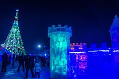 DSC09505.jpg (victoriaswebs) Tags: winter kazakhstan astana