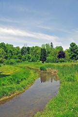 Urban Park Creek (Kevin@Nugent) Tags: park summer creek landscape nikon scenic d300