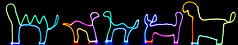 A zoo (EnKajsa) Tags: light dog lightpainting black color colour cute lamp animals cat dark painting studio fun zoo weird cool rainbow funny colorful drawing drawings led fantasy eriksson kajsa ledlamp dinasaour fotokajsa enkajsa