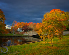 Fall colors and Dark Sky by the Bridge Street Bridge (Singing With Light) Tags: autumn sunset fall reflections photography cool october cityhall sony ct milford 25th 2015 mirrorless sonykitlens sony16mm28 lowerduckpond upperduckpond singingwithlight singingwithlightphotography alpha6000 sonya6000 lightjj