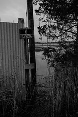 Crossing Boundaries (reclaimednj) Tags: road monochrome us newjersey flooding unitedstates nj landing climatechange 2016 sealevelrise amasa tuckerton burlingtoncounty bassrivertownship crameroysterhouse