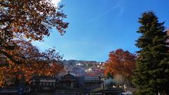 Μετσοβο P1150737 (omirou56) Tags: travel november blue autumn trees sky day greece 169 thessalia metsovo ελλαδα θεσσαλία δεντρα ταξιδι ουρανοσ σπιτια φθινοπωρο μετσοβο ημερα panasoniclumixdmctz40 νοεμβρησ