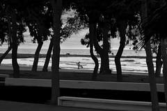 DSC_0291 (jousethecreator) Tags: sea summer beach mediterranean surf wave surfing surfboard tides mediterraneansea dogdays surfboarding benicasim vsco