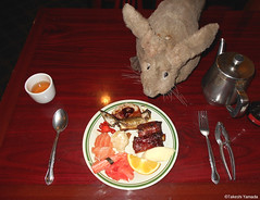 Dr. Takeshi Yamada and Seara (Coney Island sea rabbit) at the East Ocean Chinese Buffet in Brooklyn, NY on January 9, 2016. This is their favorite Chinese restaurant in New York.  20160109Sat DSCN3310=C1 (searabbits23) Tags: nyc ny newyork sexy celebrity art fashion animal brooklyn painting asian coneyisland japanese star tv google king artist dragon god manhattan wildlife famous gothic goth chinese performance pop taxidermy cnn tuxedo bikini portraiture tophat unitednations playboy entertainer takeshi samurai genius donaldtrump mermaid amc johnnydepp mardigras salvadordali unicorn billclinton hillaryclinton billgates aol vangogh curiosities sideshow jeffkoons globalwarming takashimurakami pablopicasso steampunk yamada damienhirst cryptozoology freakshow barackobama seara immortalized takeshiyamada museumofworldwonders roguetaxidermy searabbit ladygaga climategate