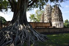 _GRL7650 (TC Yuen) Tags: architecture thailand ruins asia southeastasia buddha unesco worldheritage norththailand ancientcapital