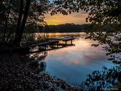Sunrise at Lake Westensee (RedCoffee_) Tags: lake sunrise de deutschland see sonnenaufgang schleswigholstein westensee