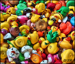 Rubber Ducks (Scott Werkheiser) Tags: red green chattanooga colors yellow kids fun duck bath play tn time rubber tub