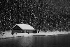 Imagined Isolation (mike_mackenzie) Tags: trees winter lake snow ice monochrome rockies cabin alberta banff lakelouise