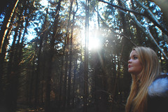 (nic lawrance) Tags: trees light shadow people sun nature girl lines woodland shine cotswolds gloucestershire pines figure shape