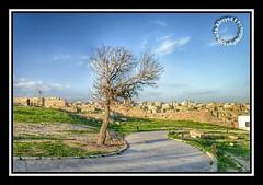 #Jordan #amman #jabal_alqal'a #jabal_al_qal'a #amman_citadel   #amman_citadel_ruins #HKJ  #monument # # #_ #__ #  # # (alrayes1977) Tags: monument amman jordan hkj   ammancitadel     jabalalqal ammancitadelruins
