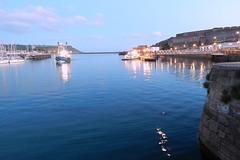 Plymouth-201506-49-FerriesAndFishingBoats (Tony J Gilbert) Tags: macro marine underwater plymouth diving scylla jameseaganlayne nikond300 handdeeps wwwdivingplymouthcom ceeking hilseapointrocks