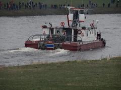 Elbe-1193 (pischty.hufnagel) Tags: elbe frisland schiffskatastrophe wawraus