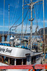 Cowichan Bay (WarpFactorEnterprises) Tags: road trip vacation vancouver island spring bayport cowichanbay 2016springvancouverislandroadtripvacationcowichan renfrewsookevictoria bayspring2016vancouverislandcowichanbayharbourboatsfishingtug2016