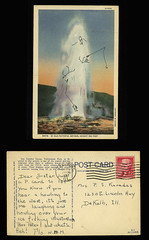 Old Faithful Geyser, height 150 feet [Yellowstone National Park] (Regional History Center & NIU Archives) Tags: park old art drawing postcard national 1957 yellowstone geyser correspondence faithful