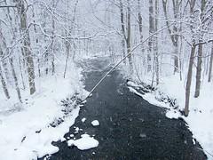 The Last Snow Storm