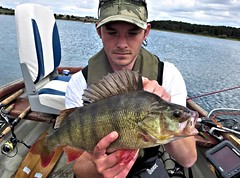 Perch 4 (TheLureBox) Tags: perch pike zander pikefishing perchfishing lurefishing zanderfishing predatorfishing