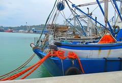 013 (Aldo433) Tags: porto trawler ortona ormeggio motopeschereccio