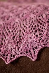 _DSC0077 (KateSi) Tags: pink rose lace rosa shawl rosada maglia sjal chal chle tricoter strikke echoflowers hacerpuntos