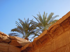 Egypt (Luxor) Palm trees in Karnak Temple (ustung) Tags: tree temple nikon outdoor ruin egypt palm karnak luxor