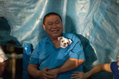 Guanxi Township (Hsinchu County) Rural tourism (Kelvin Wen) Tags: portrait dog tourism rural nikon bokeh cosina voigtlander hsinchu maltese guanxi d610  topcor