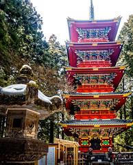 The Golden Five Storey Pagoda (Gojunoto) (tony's pics) Tags: japan nikko toshogushrine  nikk  nikktshg centraljapanspring2016