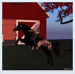Me, myself, and I (sydneylevee) Tags: ranch horse pet pets animal hair cheval shoes mesh blueberry kc ever sim bluebell chevaux ominious afrodite maitreya akk tukinowaguma lelutka scaroth uniquemegastore egoxentrikax