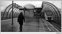 Op weg naar de trein. (Digifred. Thx for > 3 000 000 views.) Tags: street city blackandwhite holland netherlands station amsterdam blackwhite iamsterdam nederland streetphotography canals railways grachten railstation straat 2016 digifred pentaxk3