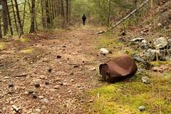 oggetto non identificato nel bosco (psychodogs) Tags: italy sentiero abruzzo appennino bosco ferro passeggiata gransasso