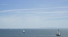 boats (mr_bohjangles) Tags: ocean boats minimalist