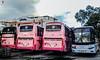 Talikuran (rnrngrc) Tags: auto 2 man bus del 1 florida body philippines transport line motors valley works series motor monte ilocos hino inc gd cagayan laoag pilipinas marcopolo d20 rm gv tuguegarao kamias cvl p11 macc sampaloc kinglong 18350 gvf hmpc p11c gd98 rm2p xmq6129y d2066 hocl dm14 xml6127 dmmw p11cth grandecho rm2pss d2066loh pbmr39 d2066loh12 gd27 grandechoii gvfti gd106 gd107