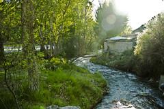 riu1 (ebsigma) Tags: naturaleza rio river atardecer flor amarillo vida araa curva largaexposicion dilar