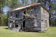 (itsbrandoyo) Tags: history abandoned nature cemetery graveyard farmhouse barn rural store general country nun historic cotton liveoak blackriver depot wisteria manning oaktrees cades liveoaks lowcountry kingstree williamsburgcounty coopersacademy
