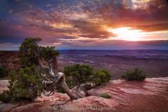 Canyonlands Sunset (LindbloomPhoto) Tags: park sunset utah desert national canyonlandsnationalpark canyonlands nationalparks desertsouthwest desertbeauty