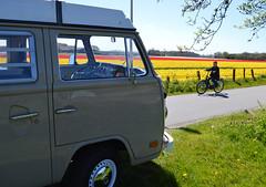 Springtime (Martin van Duijn) Tags: bus volkswagen van rv 1977 camper 77 transporter campervan t2 bulli baywindow