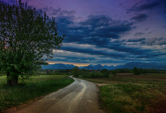 IMG_9032 sunset countryroad (pinktigger) Tags: landscape country countryside fagagna feagne friuli italia bluesky bluehour clouds sky tree sunset road countryroad italy