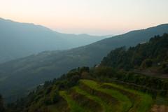 Green Hills (Pooja Pant) Tags: nepal mountains beautiful trek abc annapurna annapurnabasecamp macchapuchre