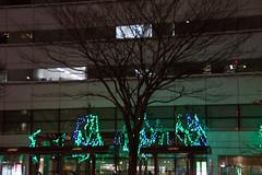 DSC03200.jpg (randy@katzenpost.de) Tags: winter japan sendai miyagiken sendaishi japanurlaub20152016