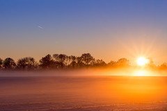 Vintersolnedgång (MagnusBengtsson) Tags: skåne vinter himmel snö träd solnedgång stehag mellanskåne