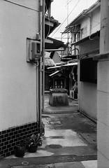 Guardian in a Blind Alley (Purple Field) Tags: street bw film monochrome japan zeiss 35mm walking 50mm alley kyoto fuji iso400 rangefinder contax ii 400 carl   neopan ikon   guardian presto  sonnar f20           analgo  stphotographia    ii