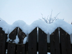 /\/\/\/\ (ulysses68) Tags: winter white snow cold fence germany january    2016