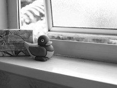 peering out the window... (Stefanious) Tags: morning wonderful duck depthoffield ornament clay windowsill quack