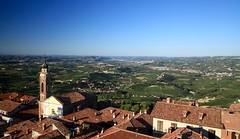 La Morra - Langhe, Piemonte (--Eli--) Tags: torre wine alba natura piemonte bianca uva settembre vigne barbaresco vino barolo vendemmia barbera lamorra langhe rossa viti roero nebbiolo dolcetto enogastronomia vitigni