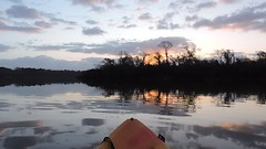 DSCN3075 (TysonAndStacy) Tags: morning water landscape fun outdoors dawn kayak texas top calming bayou kayaking meditation pasadena goodmorning tops kayaks pinkys armandbayou 77507 thingstodoinhouston pinkyskayakrental