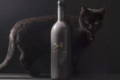Wine and Cat (lifeless567) Tags: old light food black animal cat canon vintage dark studio wine drink background watching together dust product 70d