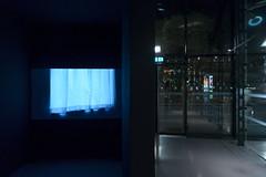 Sasha Pirker I Lotte Schreiber FILM