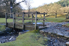 DSC_0055 (Lord Edam) Tags: bridge winter nature water grass wales river waterfall stones walk wildlife rapids betwsycoed conwy afon llugwy