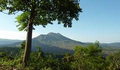 Anblick der Kraterkegel des Vulkans Batur; Bali, Indonesien (5) (Chironius) Tags: trees bali tree indonesia volcano rboles boom arbres rbol vulcan volcanoes gunung albero bume arbre rvore baum trd indonesien batur volcan vulkan volcn  aa